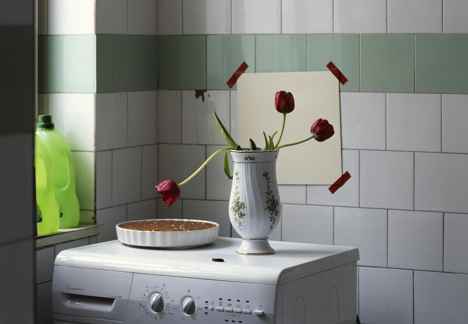 Three tulips and a cake in the bathroom, 2009, Budapest